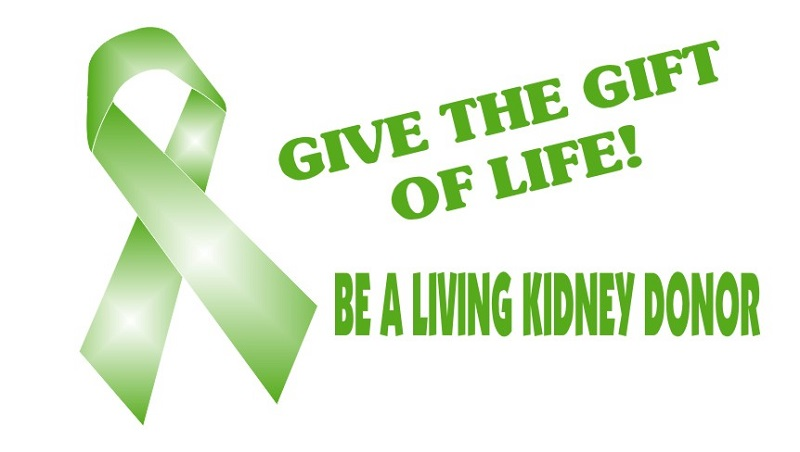 (Picture Source: kidneyquest.com)