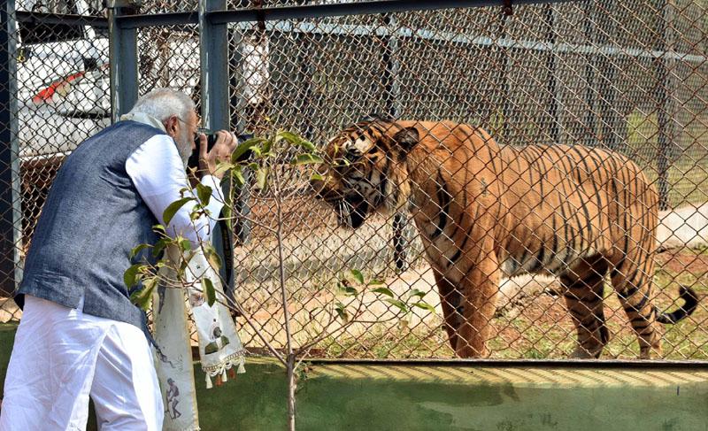 The Prime Minister, Mr. Narendra Modi visiting the Nandan Van Jungle Safari, at Naya Raipur, Chhattisgarh on November 01, 2016.